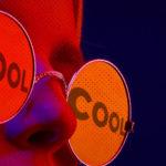 cabecera-tu-marca-es-cool